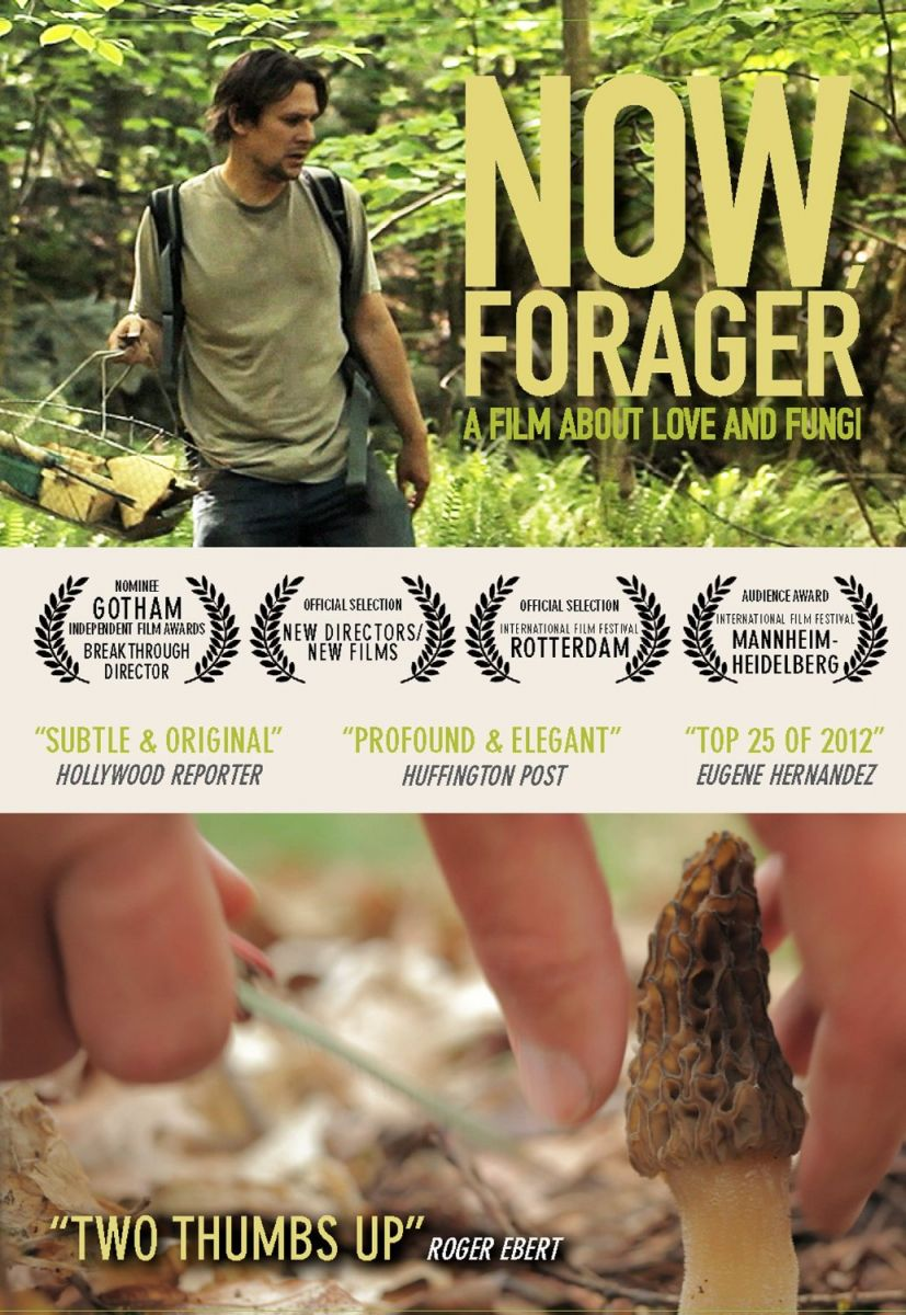 Now Forager DVD